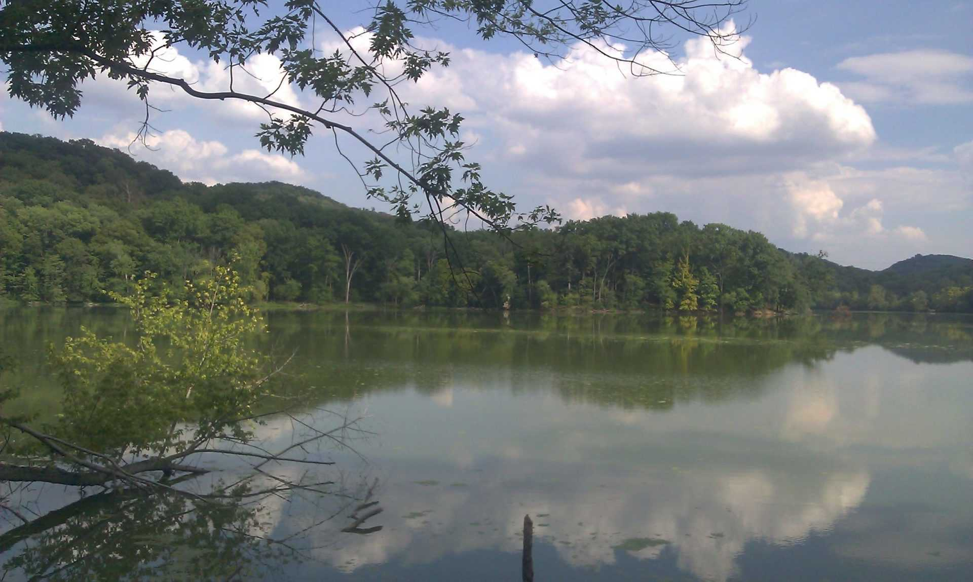 Radnor Lake - a view of the lake from the trails