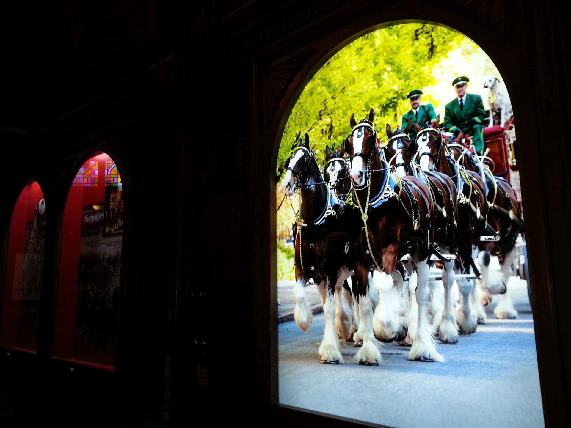 Budweiser Brewery Tour, St. Louis, MO - Clydesdales pulling wagon