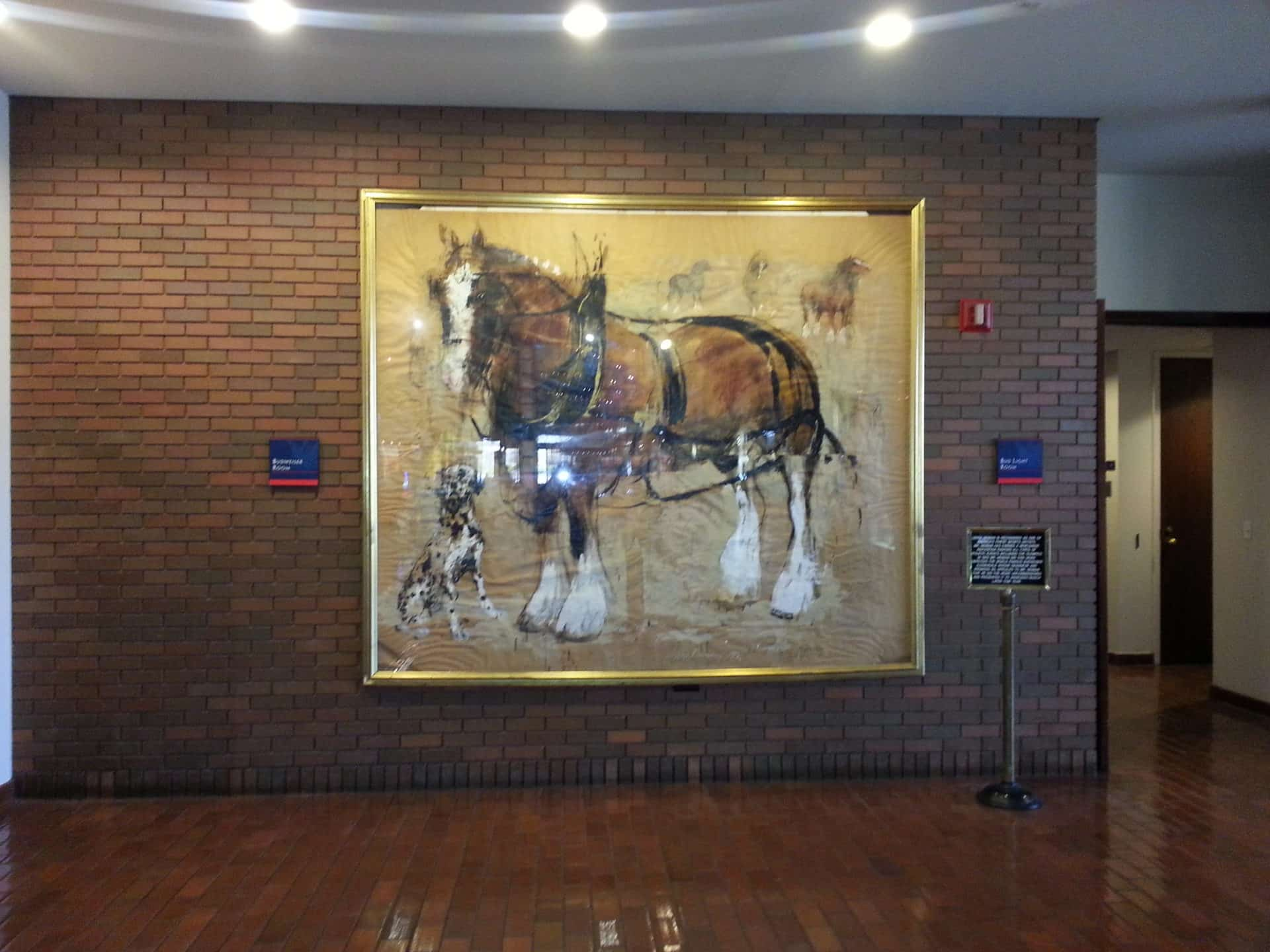 Budweiser Brewery Tour, St. Louis, MO - Clydesdale photo