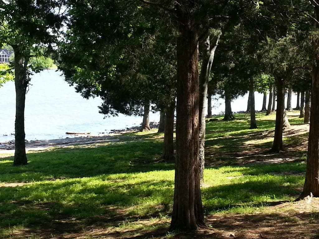 Shutes Branch Recreation Area lake front landscape