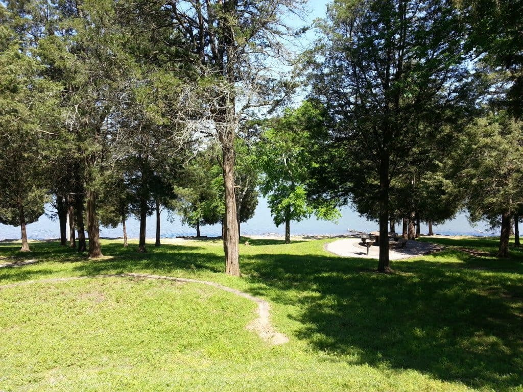 Shutes Branch Recreation Area lakefront landscape
