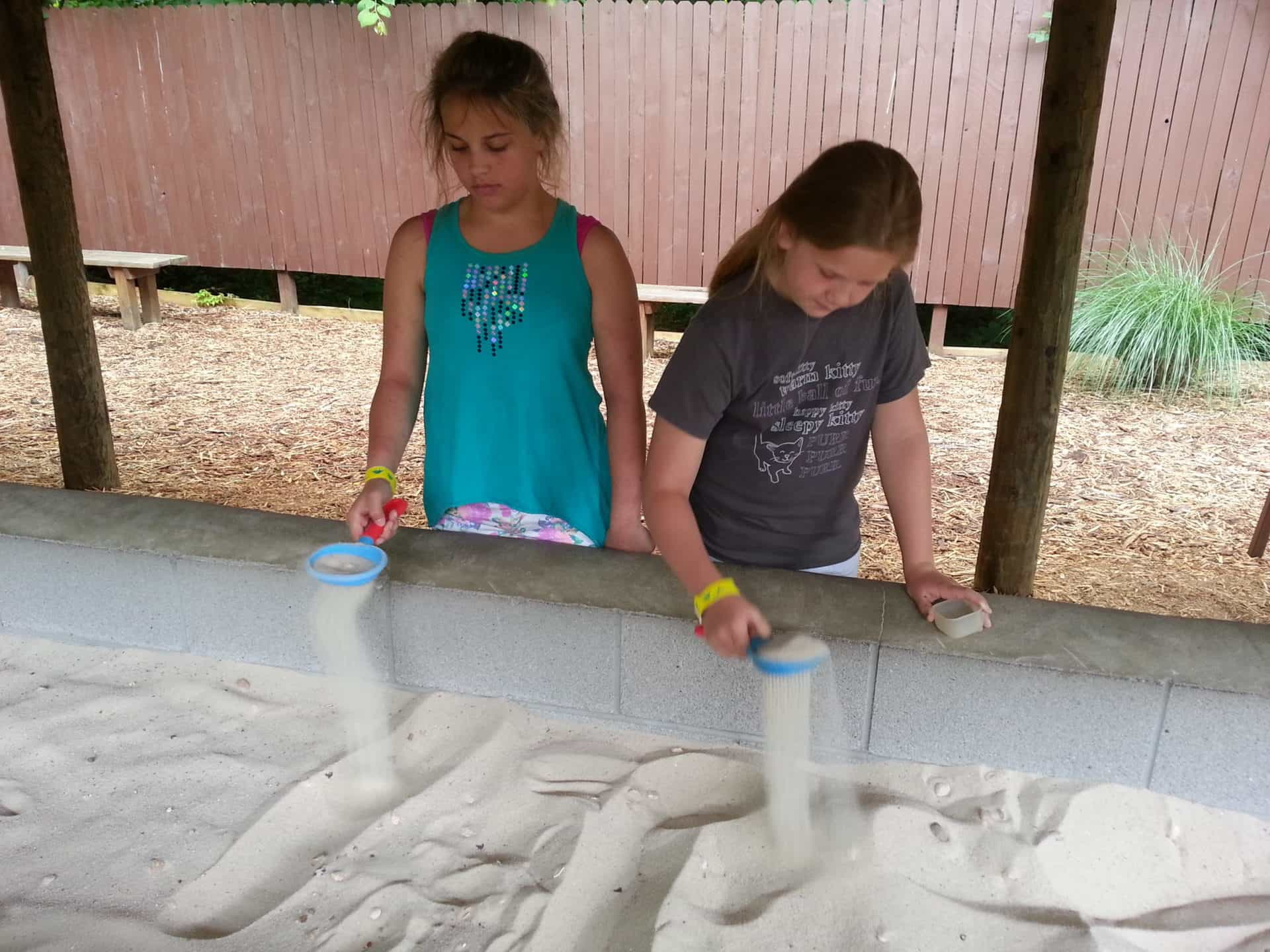 girls participating in the fossil dig at Dinosaur World