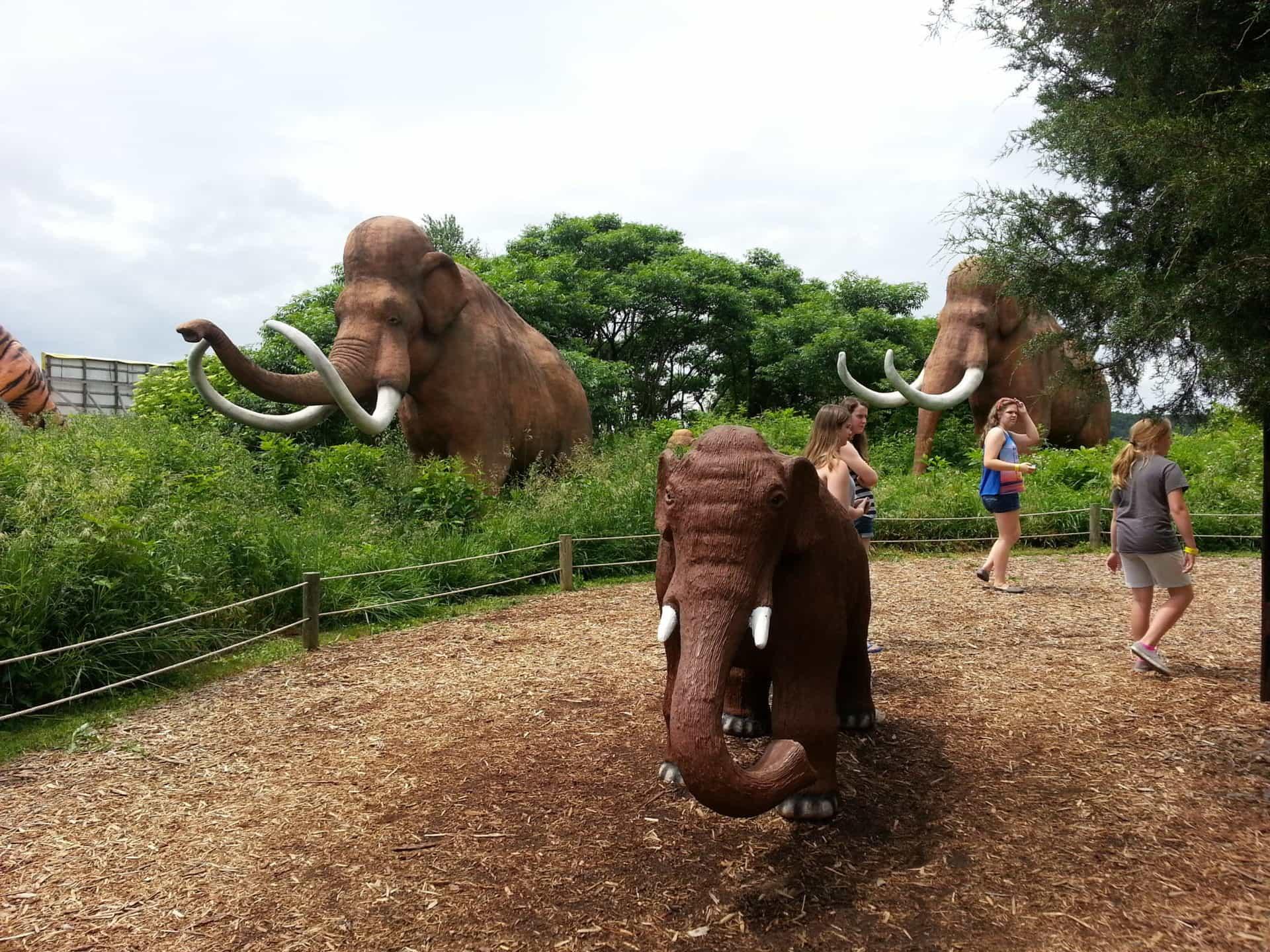 Dinosaur World mammoth display
