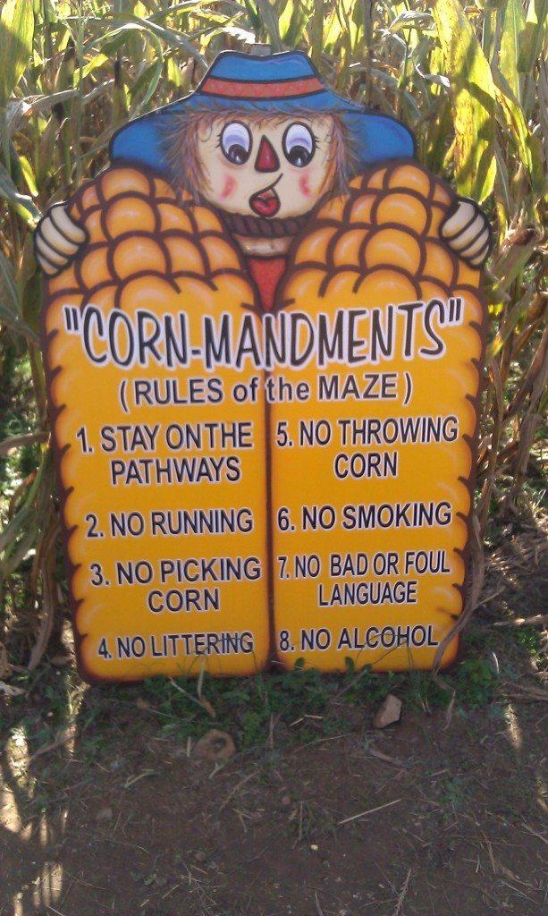 Honeysuckle Hill Farm corn maze rules
