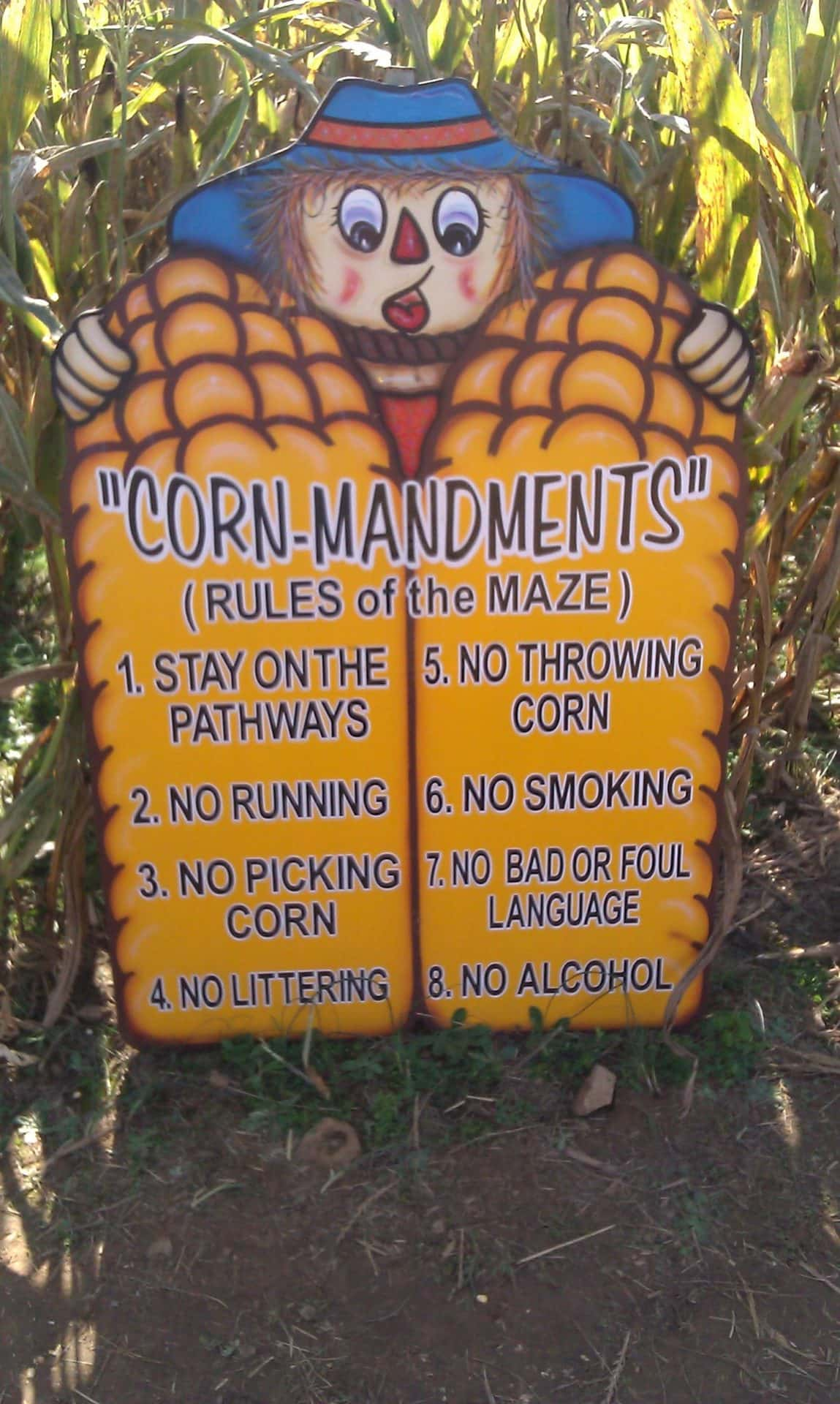 Honeysuckle Hill Farm corn maze rules