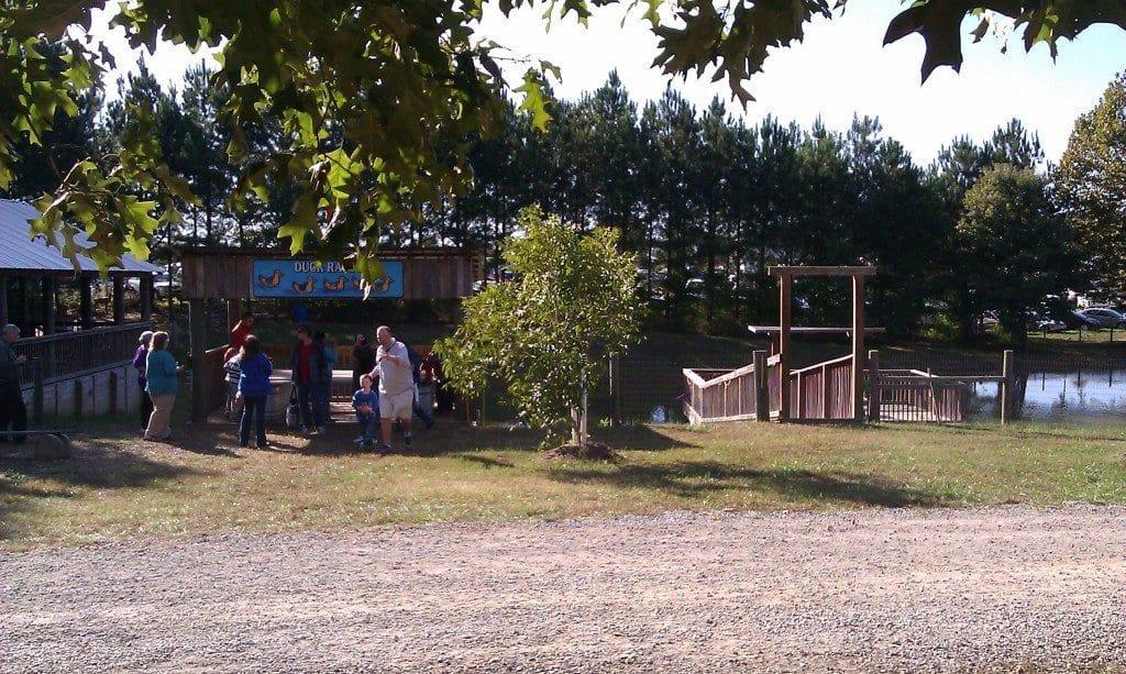 Honeysuckle Hill Farm zipline