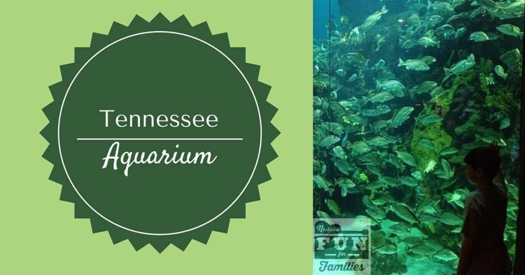 Tennessee State Aquarium