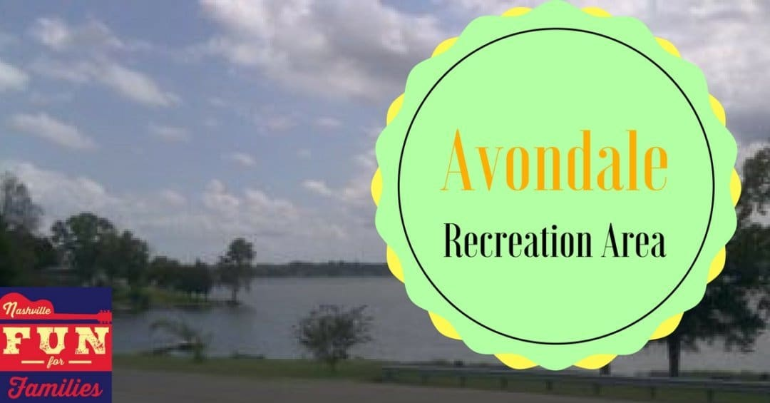 Avondale recreation area