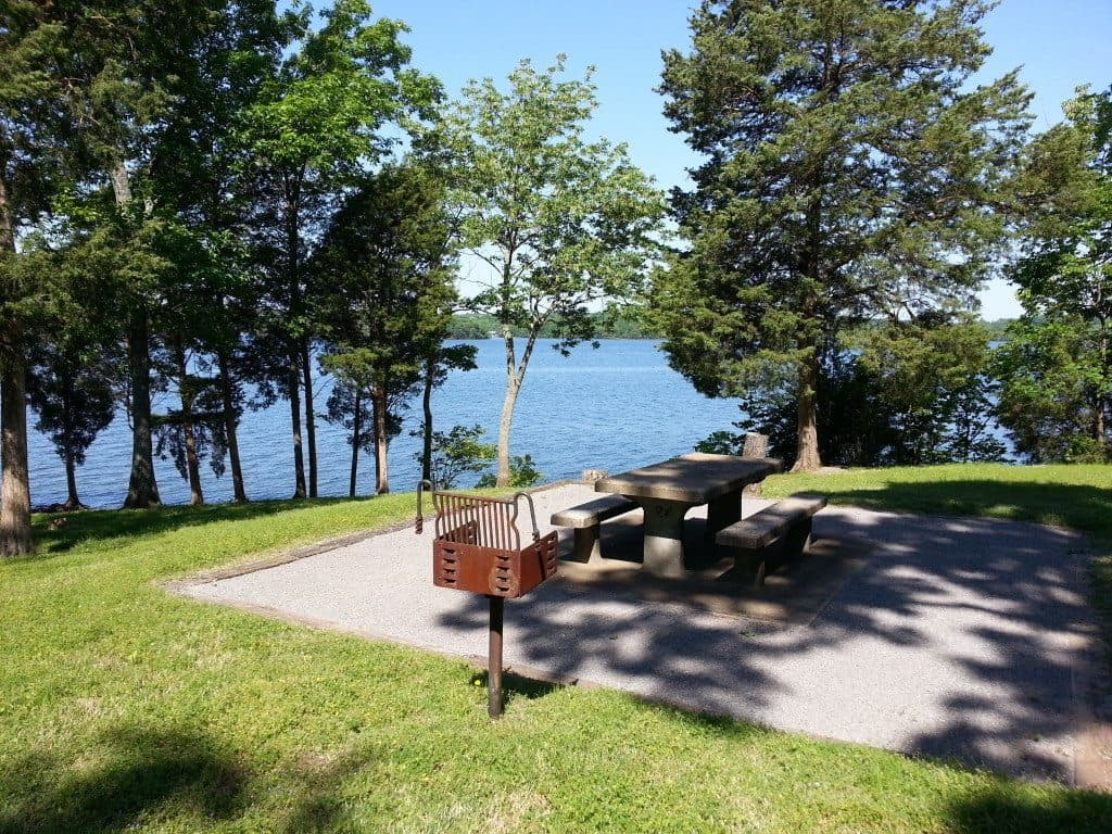 Cook Recreation Area picnic table and grill