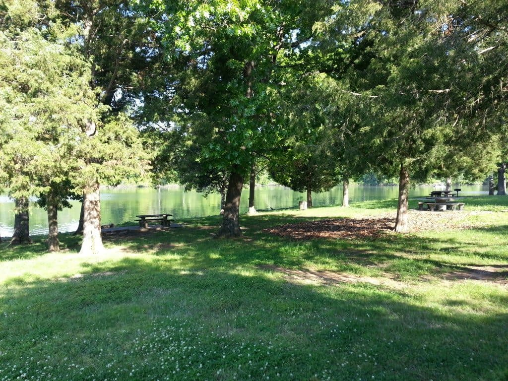 Lone Branch Recreation shaded area at the lake