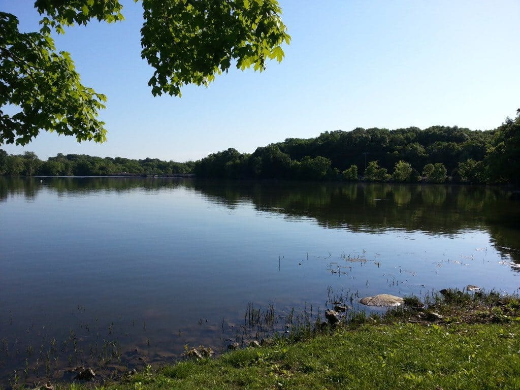 Lone Branch Recreation Area - view of the lake