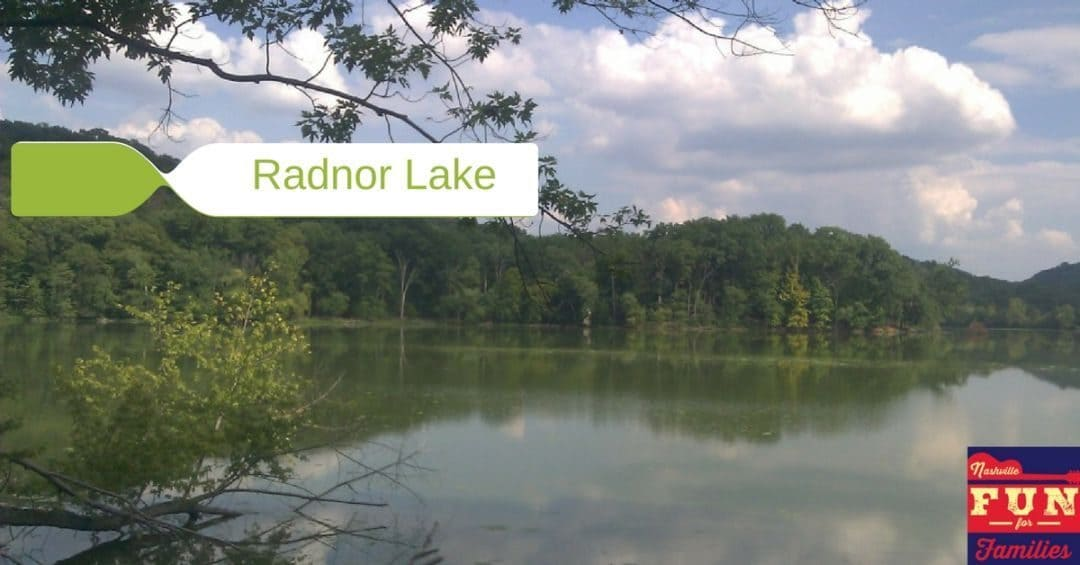 Radnor Lake – An Urban Escape