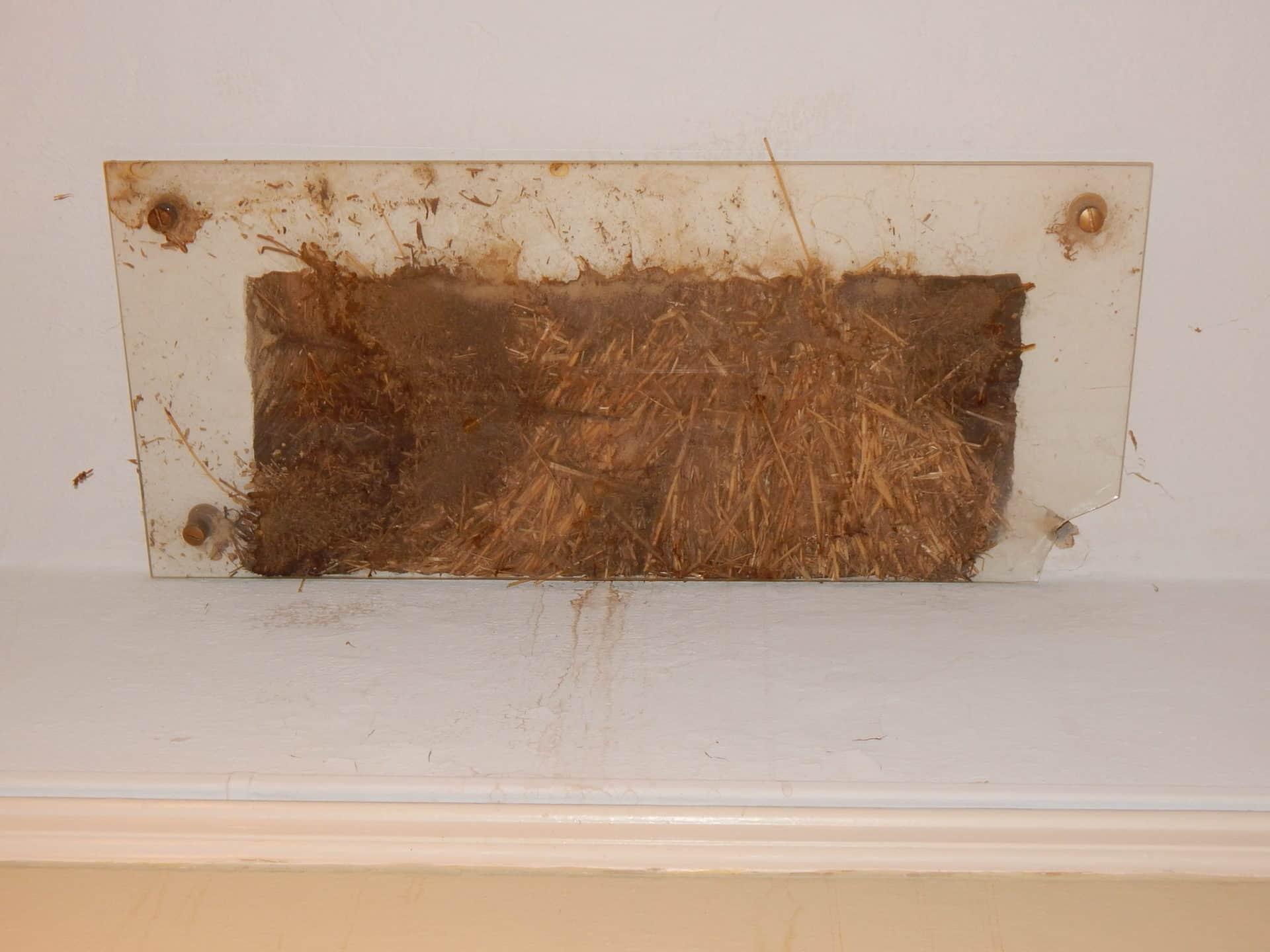 Burritt on the Mountain - Straw Insulation