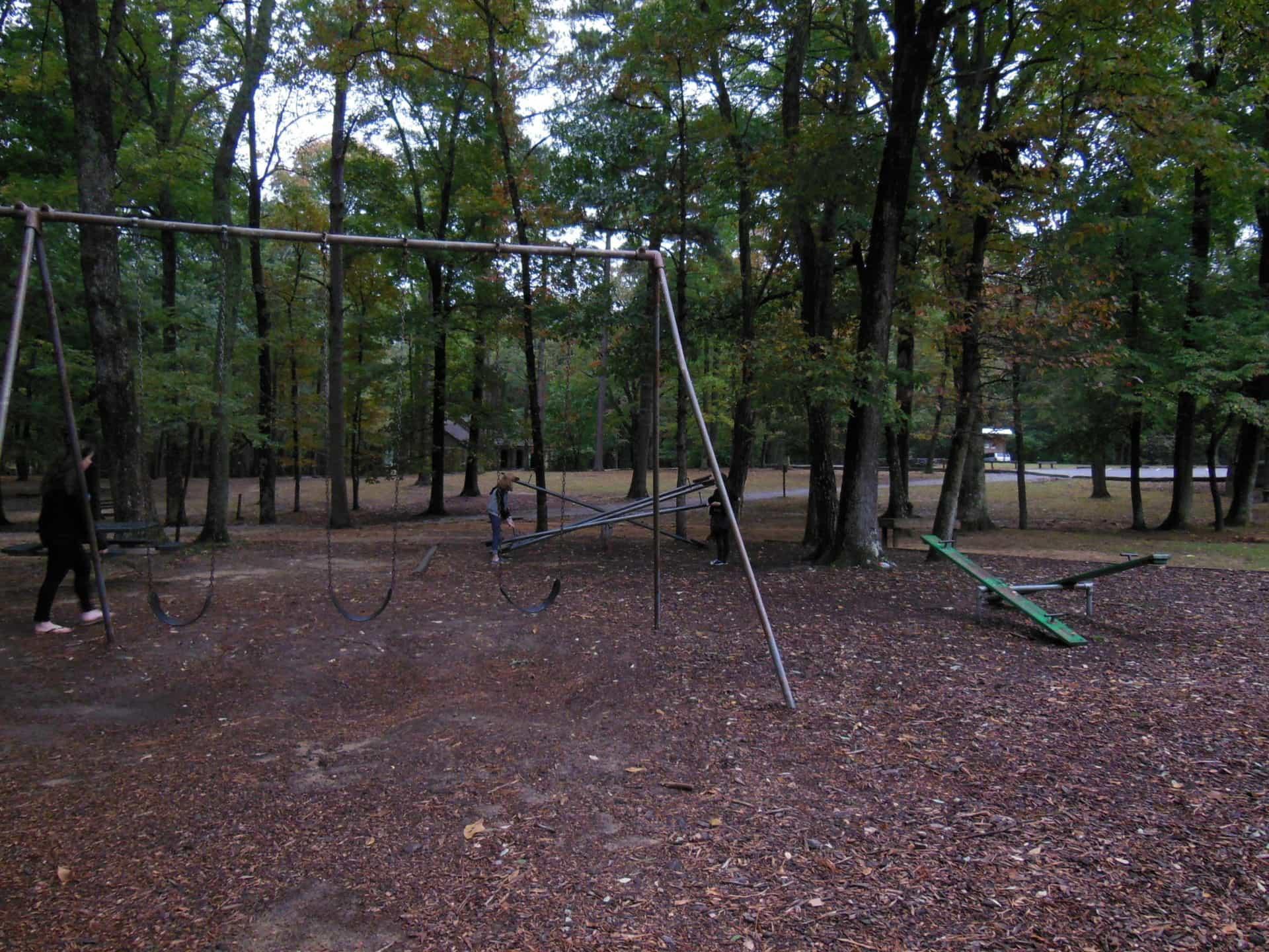 Monte Sano State Park - Swings