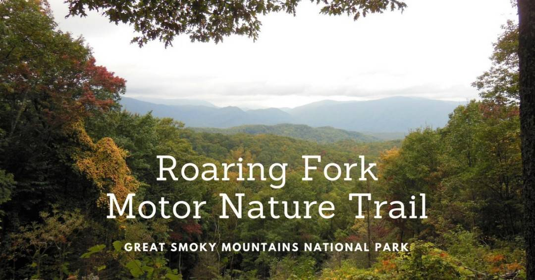See the Smoky Mountains on the Roaring Fork Motor Nature Trail
