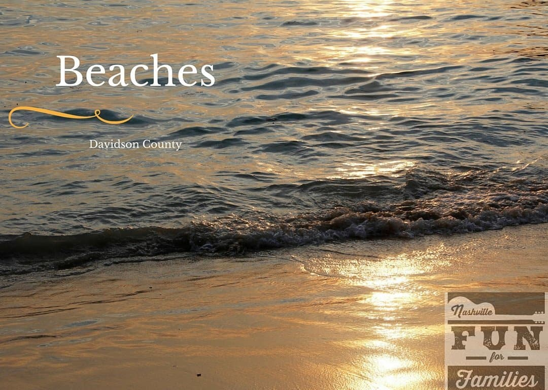 Davidson County Beaches