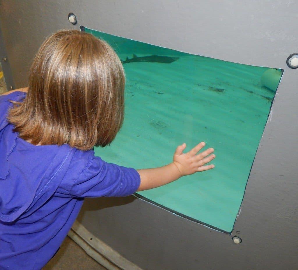 Aquarium Restaurant - quarantine tank