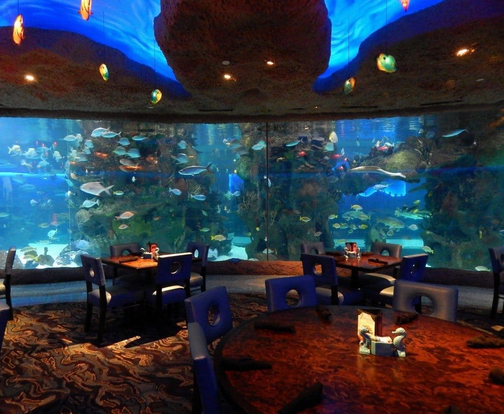 Aquarium Restaurant - table view