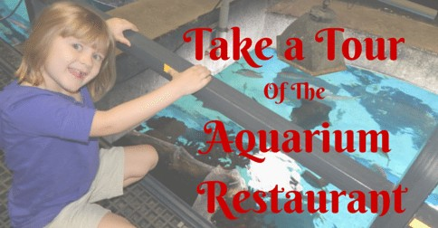 Tour the Aquarium Restaurant