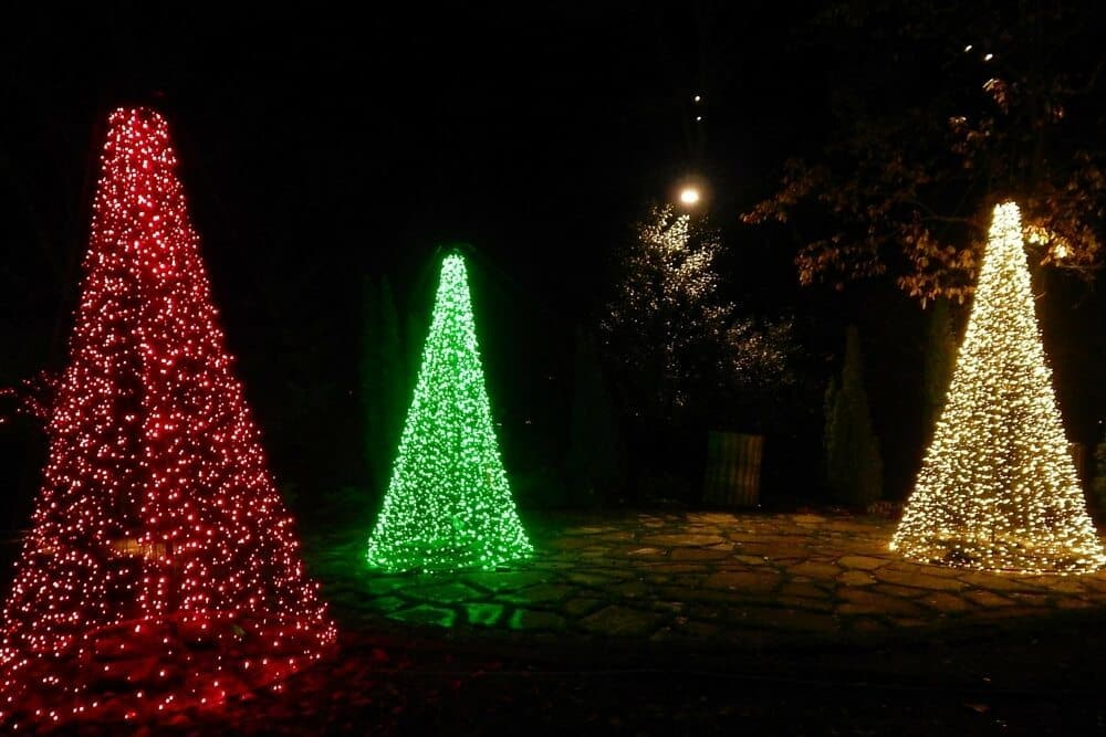 Holiday Lights at Cheekwood Botanical Garden - 2015 - 3 light trees