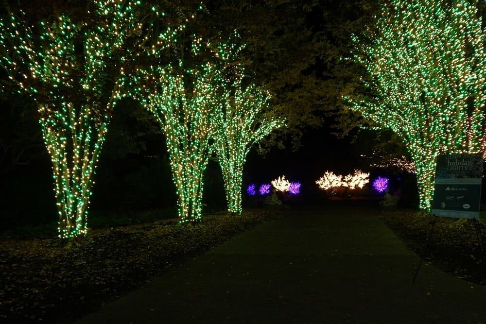 Holiday Lights at Cheekwood Botanical Garden - 2015 - lighted paths