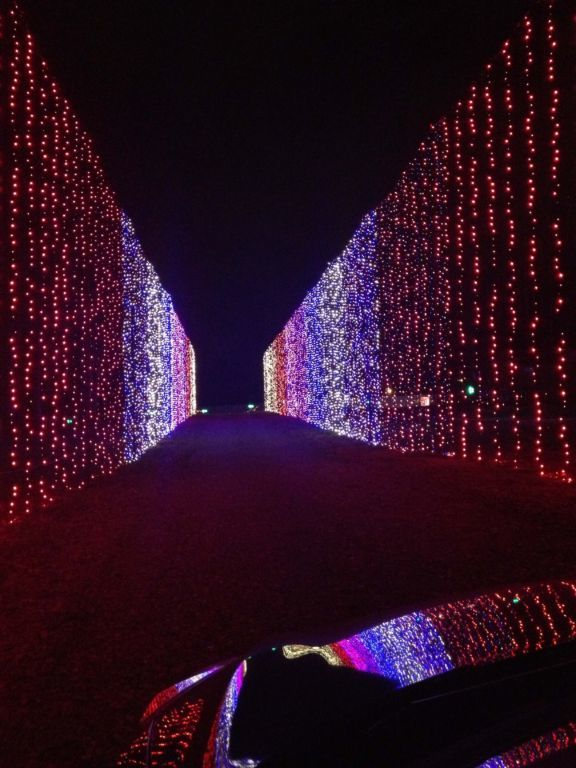 Dancing LIghts of Christmas Jellystone Park - Drive thru light tunnel