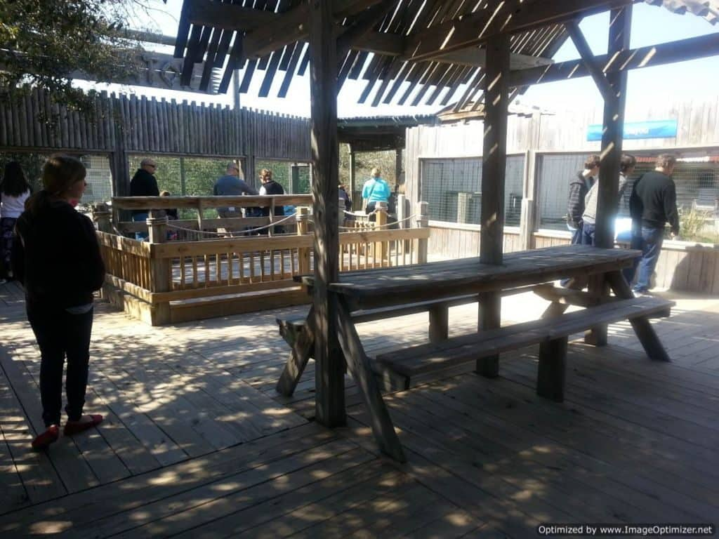 Gulfarium Marine Adventure Park outdoor exhibits