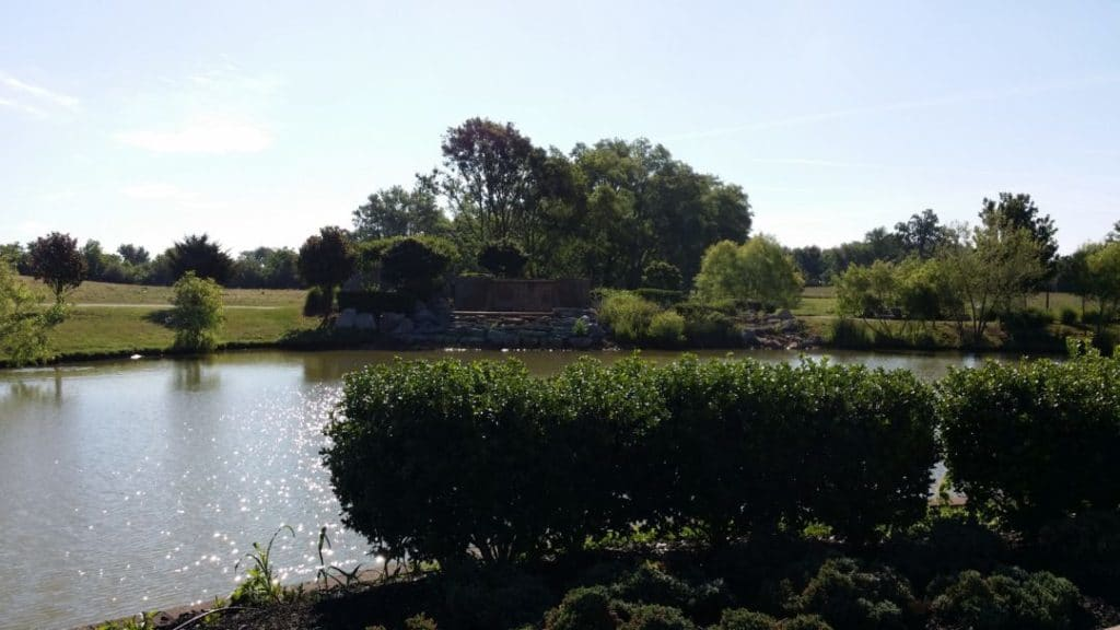 Gateway Island pond and landscape
