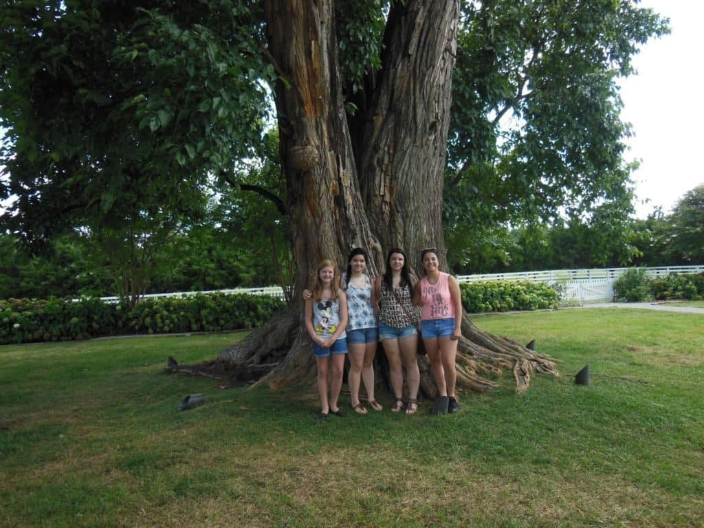 girls at the Carnton Plantation Wisdom Tree