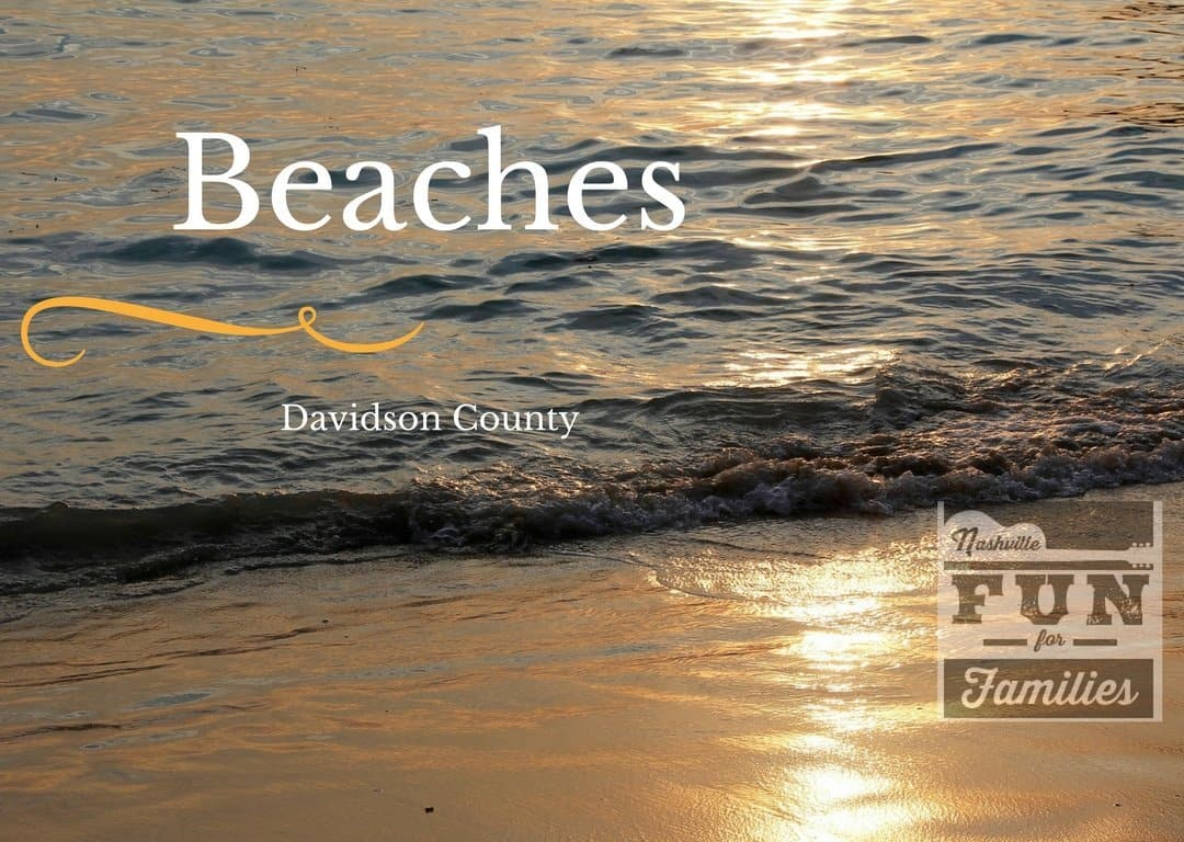 Davidson County Beaches
