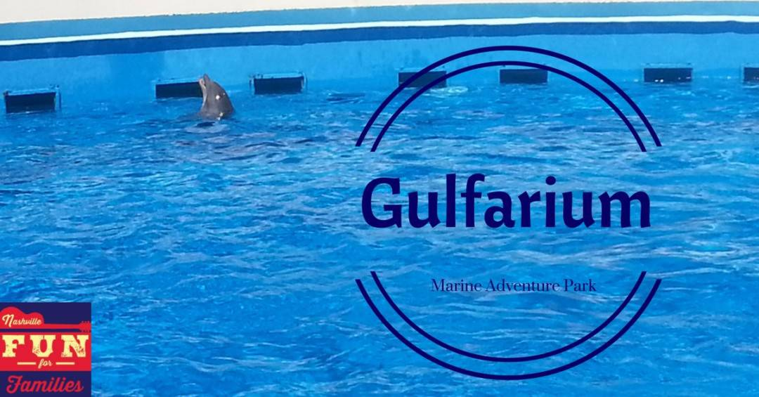 Gulfarium Marine Adventure Park