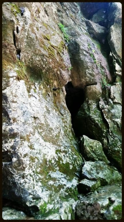 Lost Creek Falls Cave 2