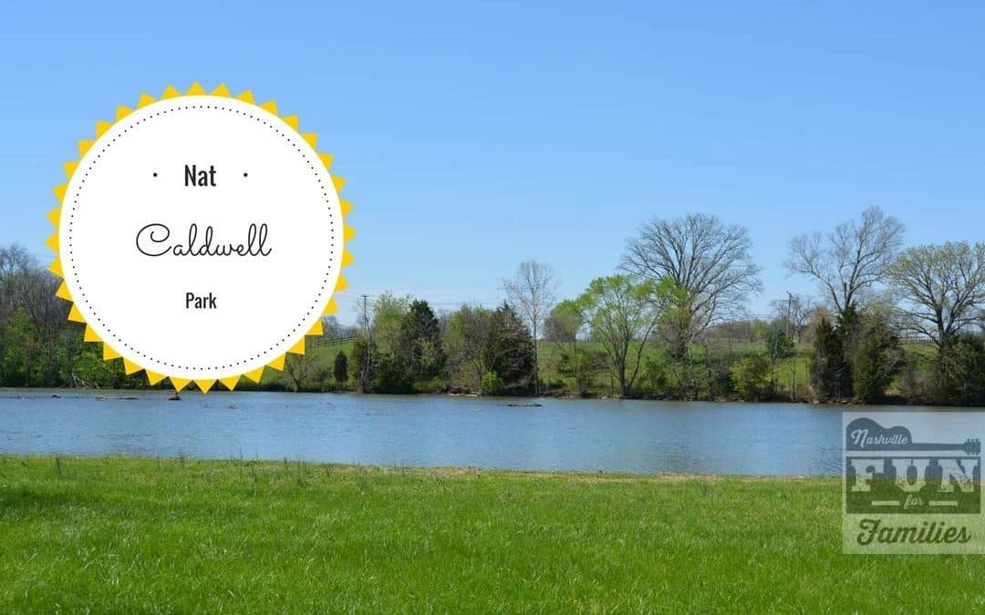 Hike, Picnic, and Enjoy Old Hickory Lake at Nat Caldwell Park