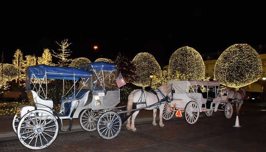 Gaylord Opryland Country Christmas - carriage