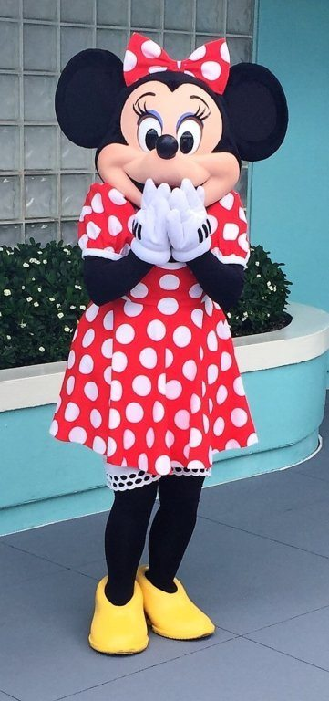 First Trip to Disney World - Minnie Mouse