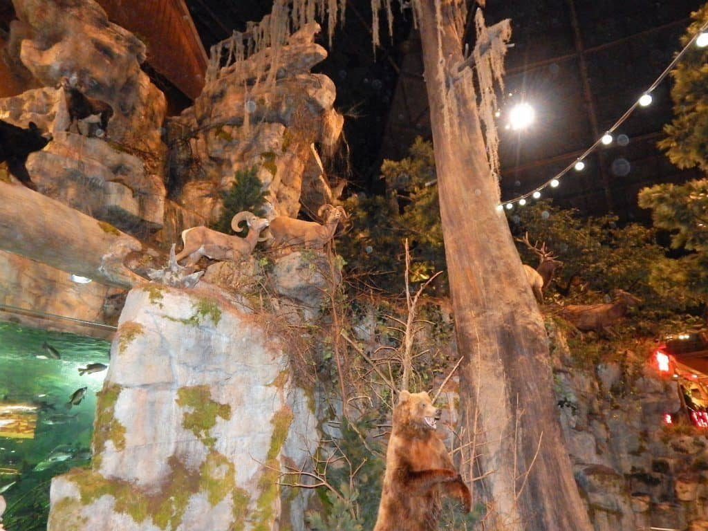 Bass Pro Shops Pyramid Memphis Bear
