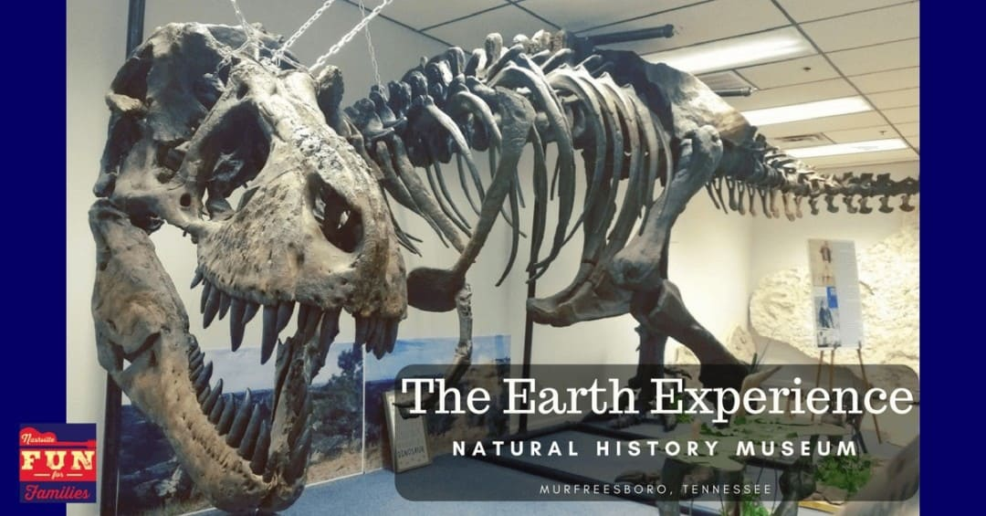 The Earth Experience Natural History Museum