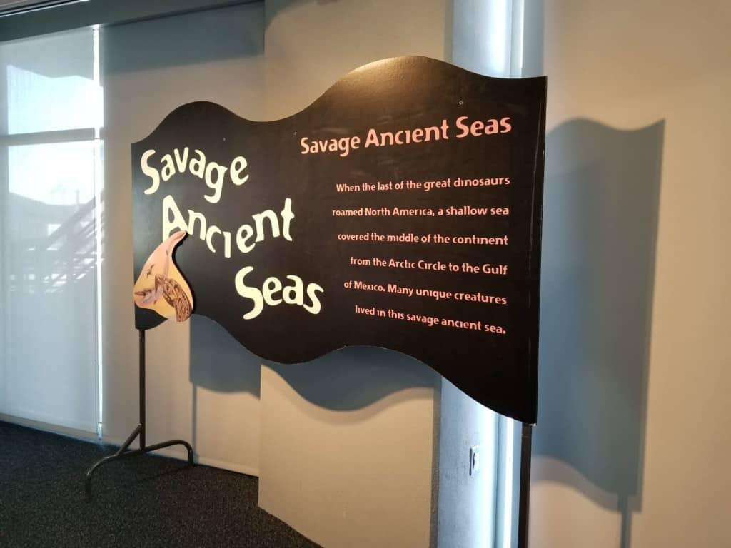Gulf Quest ancient seas exhibit