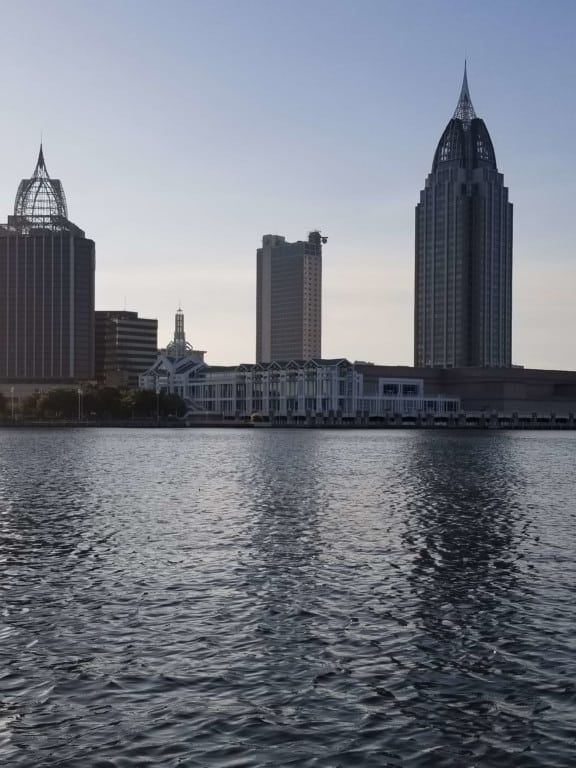 Gulf Coast Ducks Mobile Skyline