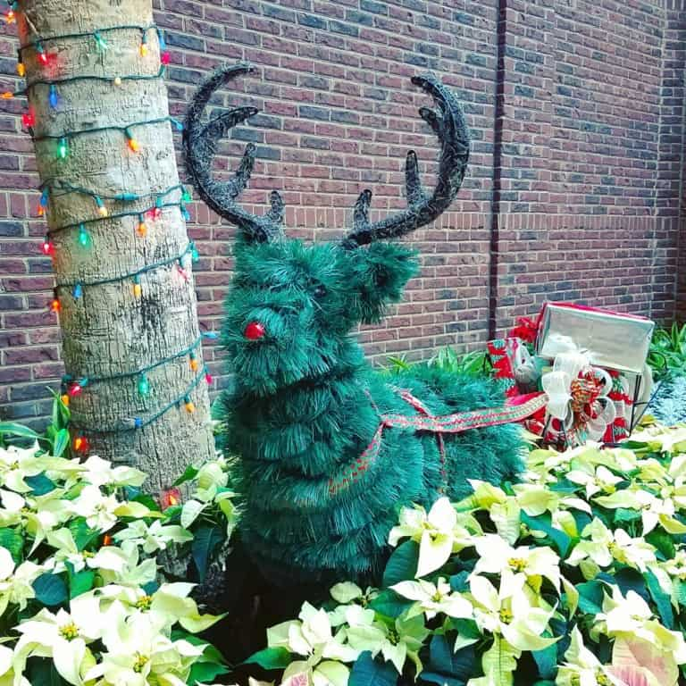 Gaylord Opryland's Build-a-bear workshop scavenger hunt - Green topiary rudolph statue
