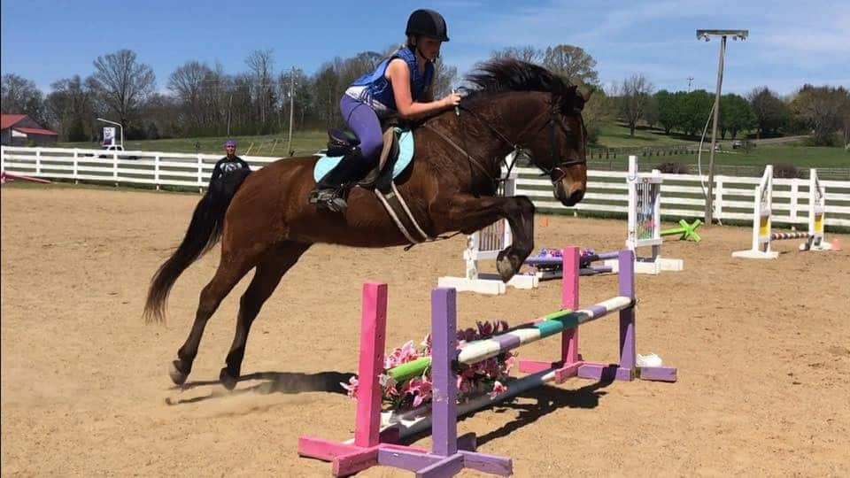 Creekside Riding Academy Camp - Horse jumping over a gate
