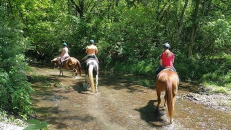 Creekside Riding Academy Camp - riding on horses through a creek