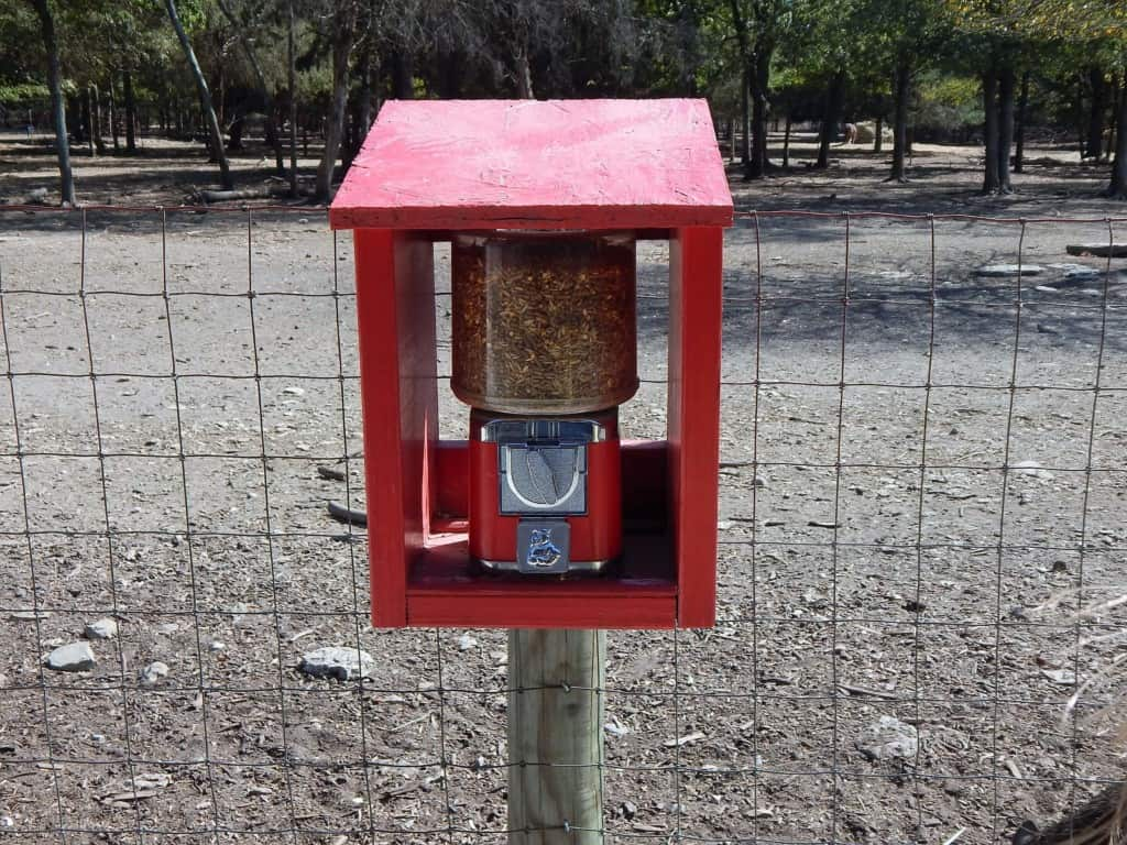 Lucky Ladd Farms - animal food machine