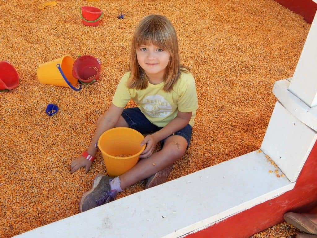 A girl holding a bucket playing in dried corn at Lucky Ladd Farms