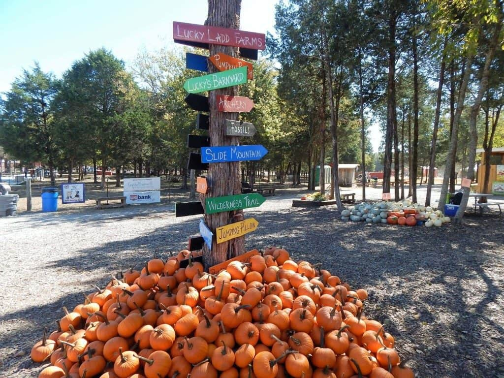 Lucky Ladd Farms - fall activity signs with small pumpkins at the base of the sign
