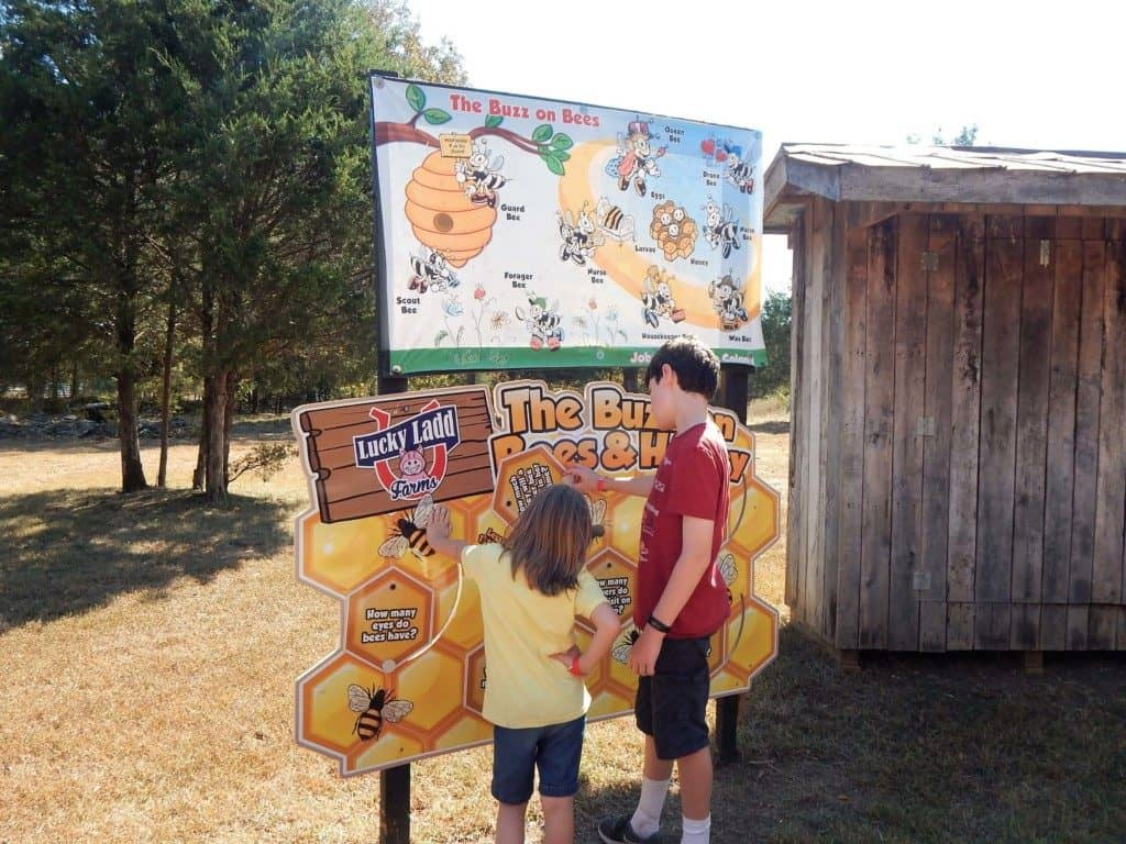 A boy and girl reading a sign and learning about bees at Lucky Ladd Farms