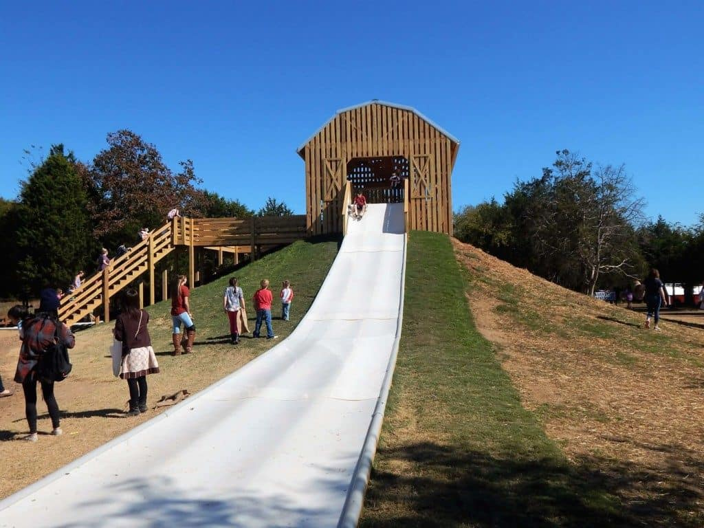 Very tall white slide that starts inside a barn for kids to slide down at Lucky Ladd Farms