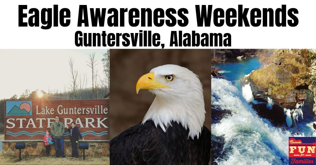 Eagle Awareness Weekend – Family Fun in Guntersville, Alabama