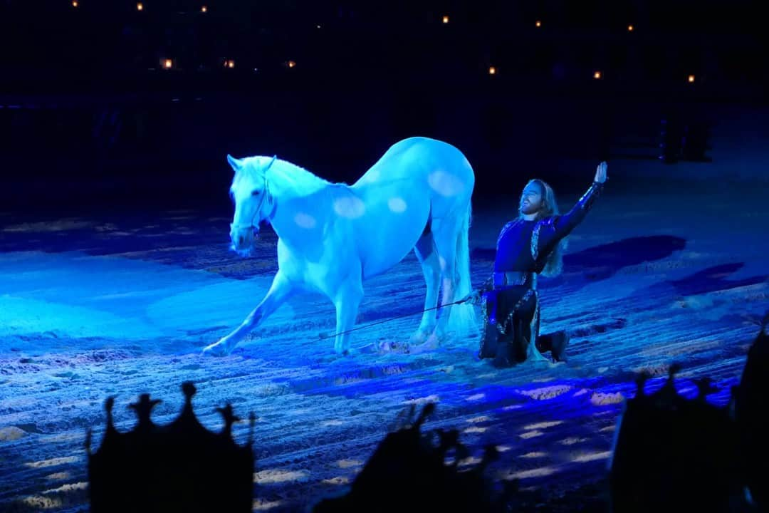 White horse and a knight both bow in the center of the ring at Medieval Times