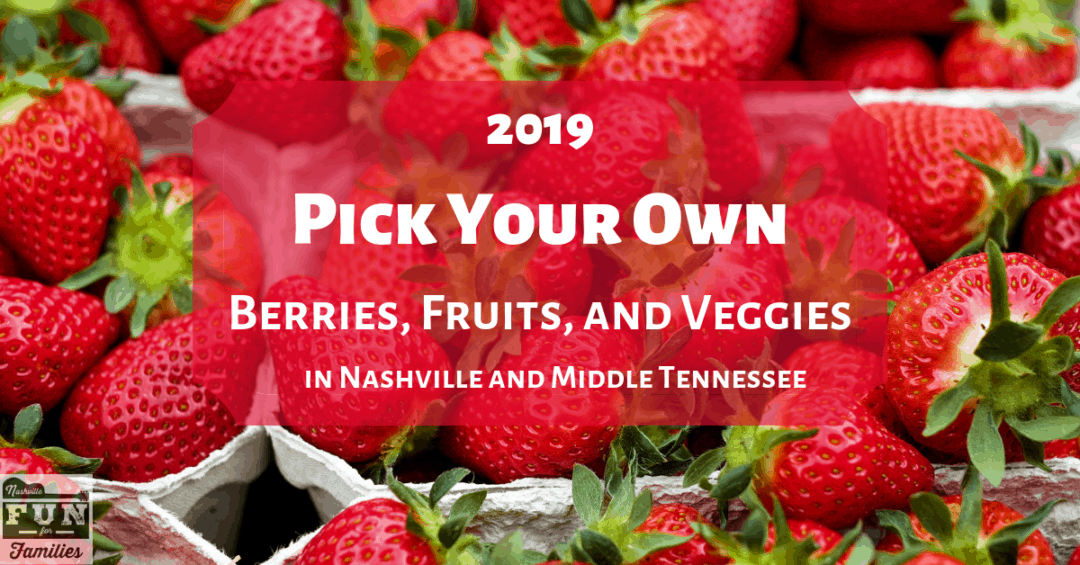 Pick Your Own Berries, Fruits and Veggies in Nashville